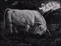 Artist Charles Frederick Tunnicliffe R.A.: The Chartley Bull, 1939