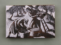 Artist Clare Leighton: Apple Harvest, BPL 568